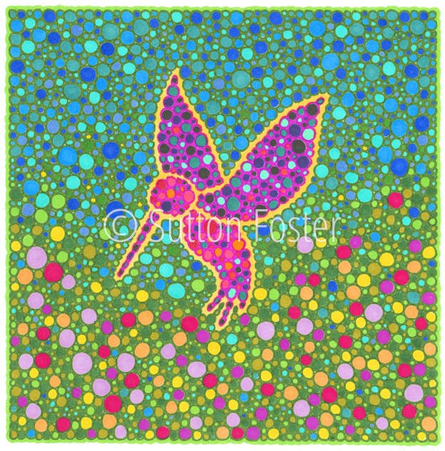 Hummingbird-c-Sutton-Foster