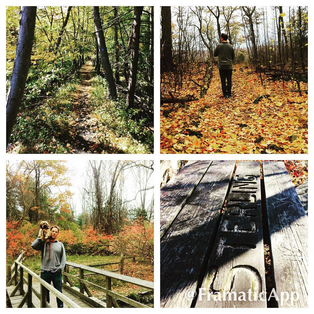 Exploring Sterling Forest this fall hiking fall2015 sterlingforest